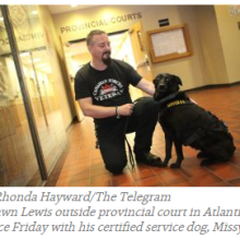 PTSD_&_DOGS
